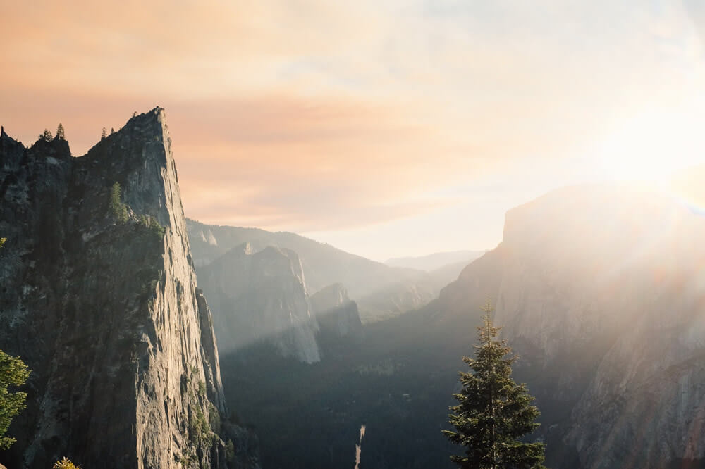 Six Timeless Principles of Naturopathic Medicine